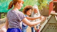 Group of women painting chicken coop